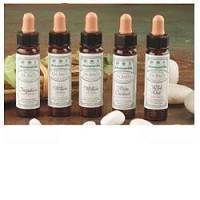AINSWORTHS WHITE CHESTNUT 10ML