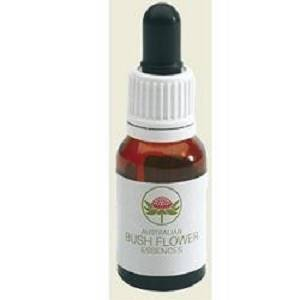 STURT DESERT ROSE AUSTR15ML GT